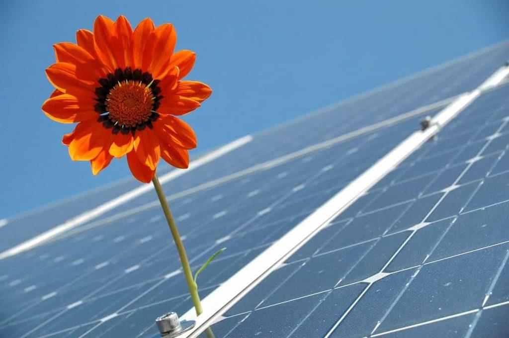 Créer entreprise solaire